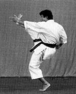 Shotokan Kata – Part Two